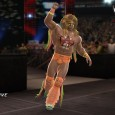 wwe2k14warrior