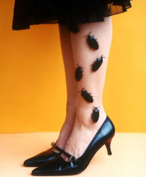 2. Buggs on legs