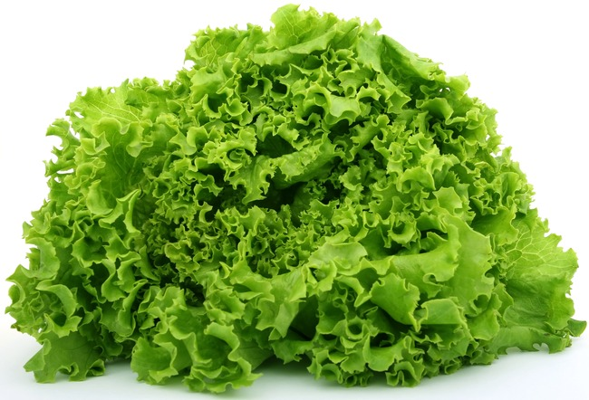 9. Men in England have been avoiding lettuce because they thought it will make them steril