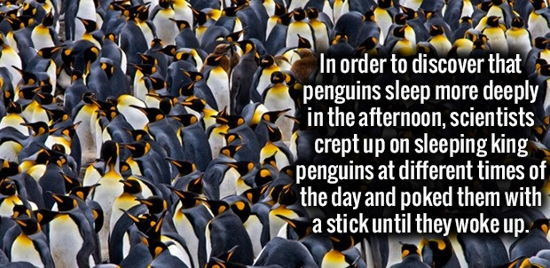 Random Cool Facts That Will Get You Going This Week