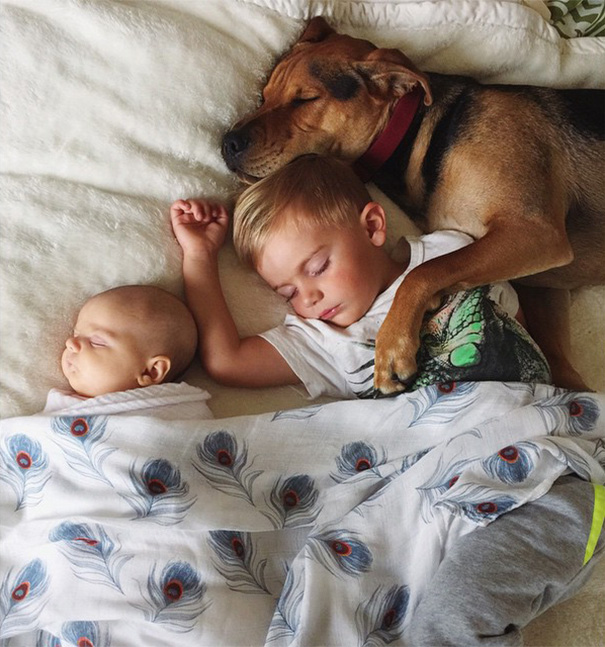 The Boy Who Became Famous By Sleeping With His Dog Now Has