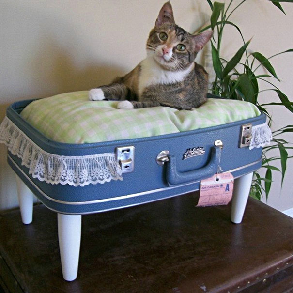 12. Suitcase cat bed