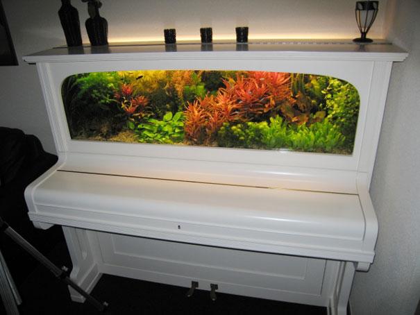 14. Piano aquarium