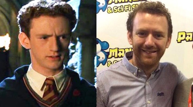 Chris Rankin as Percy Weasley