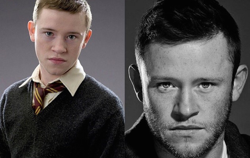 Devon Murray as Seamus Finnigan