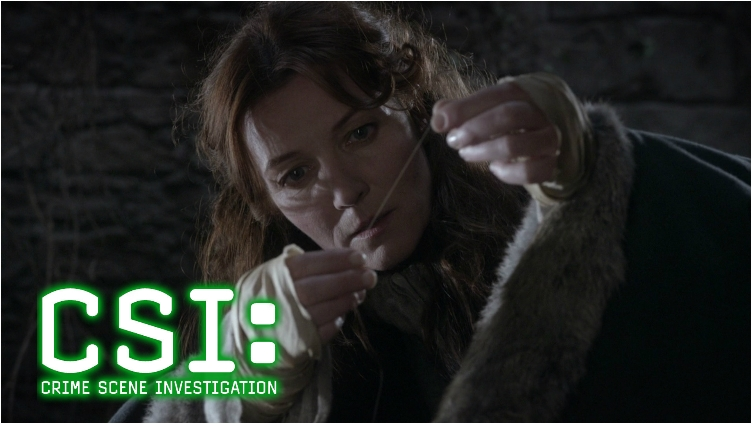 Catelyn-Stark-in-CSI-1920x1080