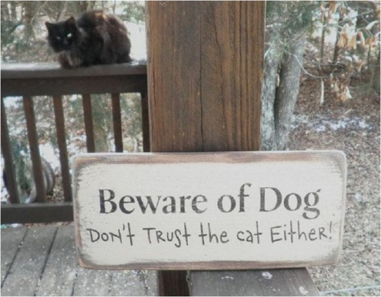 top-10-funny-beware-of-dog-signs-8