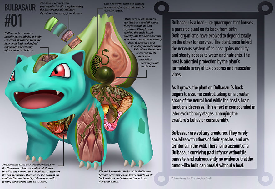 pokemon-anatomy-pokenatomy-christopher-stoll-1