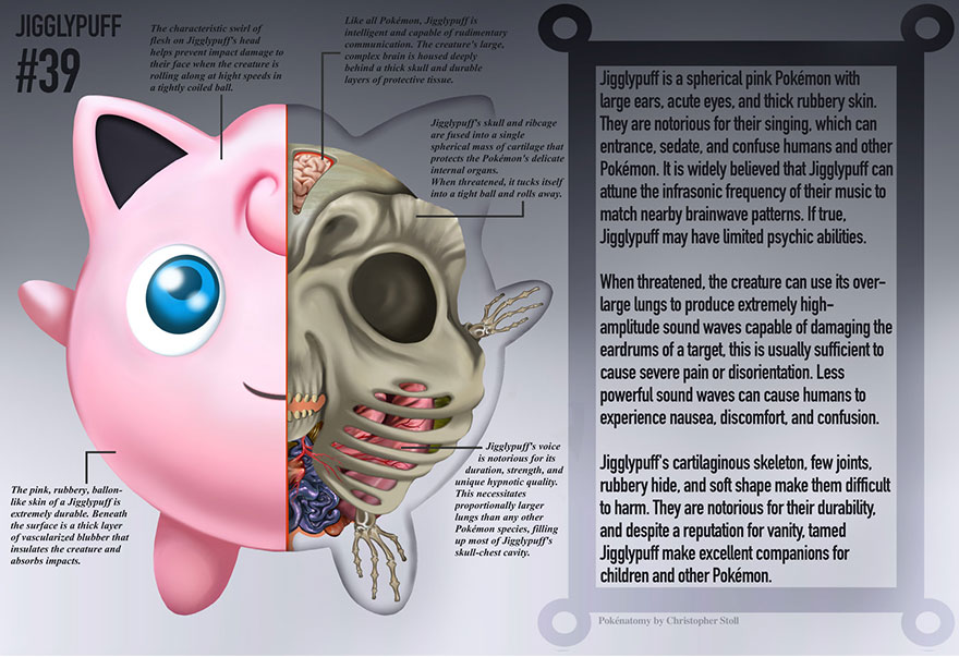 pokemon-anatomy-pokenatomy-christopher-stoll-3