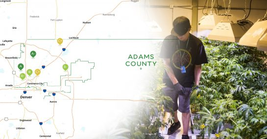 """Adams County, East of Denver, May Legalize Marijuana Delivery"""" title=""""Adams County, East of Denver, May Legalize Marijuana Delivery"""